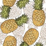 Modèle sans couture avec des ananas Dessin stylisé de graphique Image libre de droits