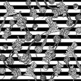 Modèle sans couture avec des betteraves Photo libre de droits