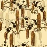 Modèle sans couture avec des branches d'aulne. Photographie stock libre de droits