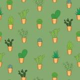 Modèle sans couture avec des cactus Images libres de droits