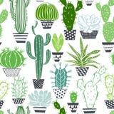Modèle sans couture avec des cactus et des succulents Images libres de droits