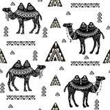 Modèle sans couture avec des chameaux et des motifs ethniques Photographie stock libre de droits