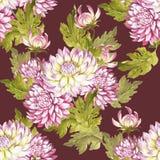 Modèle sans couture avec des chrysanthèmes Illustration d'aquarelle d'aspiration de main Photos stock