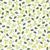Modèle sans couture avec des citrons sur le fond blanc Photo libre de droits