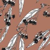 Modèle sans couture avec des eucalipts dessins image stock