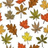 Modèle sans couture avec des feuilles d'automne sur le fond blanc illustration libre de droits