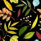 Modèle sans couture avec des feuilles de vert et de jaune Photographie stock
