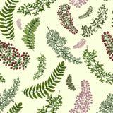 Modèle sans couture avec des feuilles et des branches Photographie stock libre de droits