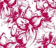 Modèle sans couture avec des fleurs d'amaryllis Images libres de droits