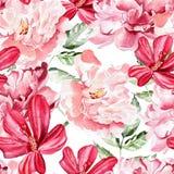 Modèle sans couture avec des fleurs d'aquarelle pivoines Photos stock
