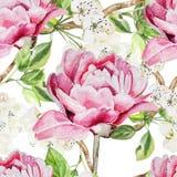 Modèle sans couture avec des fleurs d'aquarelle pivoines Photos libres de droits