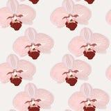 Modèle sans couture avec des fleurs d'orchidée Image libre de droits