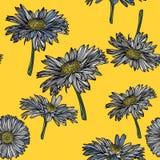 Modèle sans couture avec des fleurs de camomille Images libres de droits