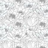 Modèle sans couture avec des fleurs de lis blanc Image libre de droits