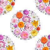 Modèle sans couture avec des fleurs de ressort et d'été Photographie stock libre de droits