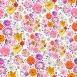Modèle sans couture avec des fleurs de ressort et d'été Photo libre de droits