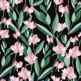 Modèle sans couture avec des fleurs et des feuilles d'aquarelle illustration libre de droits