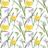 Modèle sans couture avec des freesias colorés et des herbes Texture d'impression de tissu sur le fond blanc Illustration de Digit Illustration Libre de Droits