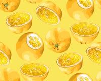 Modèle sans couture avec des fruits d'arbre orange dans différentes formes illustration libre de droits