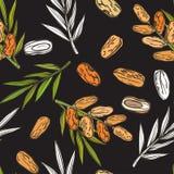 Modèle sans couture avec des fruits et des paumes de date illustration libre de droits