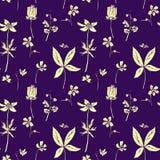 Modèle sans couture avec des herbes de dessin Photo stock