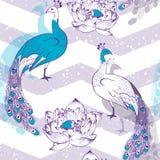 Modèle sans couture avec des oiseaux de paon dans le vecteur Images stock