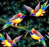 Modèle sans couture avec des oiseaux de royaume des fées Image libre de droits