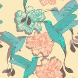Modèle sans couture avec des oiseaux et des fleurs de colibri Photographie stock libre de droits