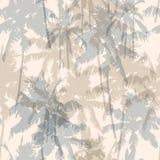 Modèle sans couture avec des palmiers Photos stock