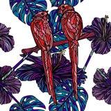 Modèle sans couture avec des perroquets Photographie stock libre de droits