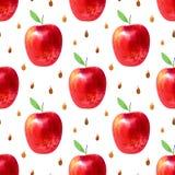 Modèle sans couture avec des pommes et des graines Photo de nourriture Photo stock