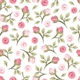 Modèle sans couture avec des roses. illustration stock