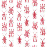 Modèle sans couture avec des scarabées Images libres de droits