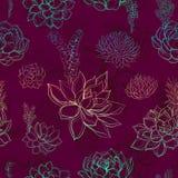Modèle sans couture avec des succulents Arc-en-ciel dessins watercolor illustration stock