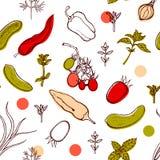 Modèle sans couture avec des tomates, poivrons, oignons, concombres, basilic, aneth, thym Fond avec des légumes et des herbes épi Image stock