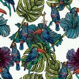 Modèle sans couture avec des toucans Photo libre de droits
