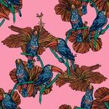 Modèle sans couture avec des toucans Images libres de droits