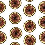Modèle sans couture avec des tranches de pamplemousse illustration stock