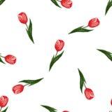 Modèle sans couture avec des tulipes Photo libre de droits