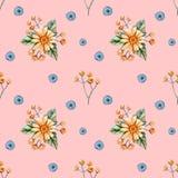 Modèle sans couture avec des wildflowers d'aquarelle sur un fond orange Modèle en pastel sensible avec les marguerites jaunes illustration libre de droits