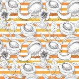 Modèle sans couture avec l'abricot et la rayure orange Image libre de droits