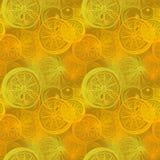 Modèle sans couture avec l'agrume tiré par la main d'oranges Dessin de stylo, Images libres de droits