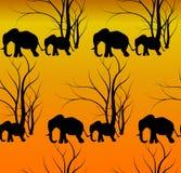 Modèle sans couture avec l'animal mignon, éléphants Le bébé du ` s d'éléphant avec la mère Une promenade dans la savane Illustration Libre de Droits