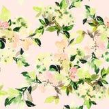 Modèle sans couture avec l'aquarelle de fleurs Image libre de droits