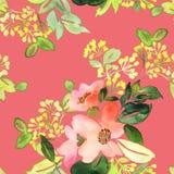 Modèle sans couture avec l'aquarelle de fleurs Images libres de droits
