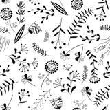 Modèle sans couture avec l'herbe sauvage Images libres de droits