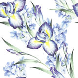 Modèle sans couture avec l'iris et l'hortensia Illustration d'aquarelle Photo libre de droits