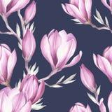 Modèle sans couture avec la brindille de floraison de magnolia Illustration d'aquarelle Images stock
