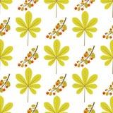 Modèle sans couture avec la feuille et la branche de châtaigne avec des feuilles et des baies illustration de vecteur