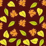 Modèle sans couture avec la feuille, fond de feuille d'automne Fond de Brown Images stock